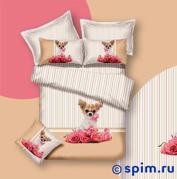 Постельное белье Diva Afrodita Mild FS-007 Двуспальное постельное белье diva afrodita постельное белье