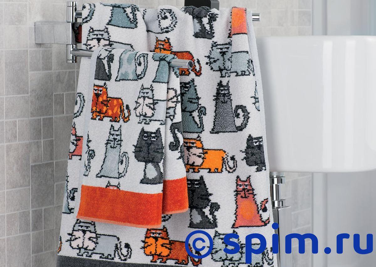 Полотенце Feiler Cats 50х100 см